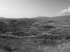 Armenian Stonehenge.
